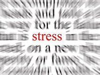 More About Stress #01